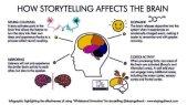 Cómo el storytelling afecta el cerebro